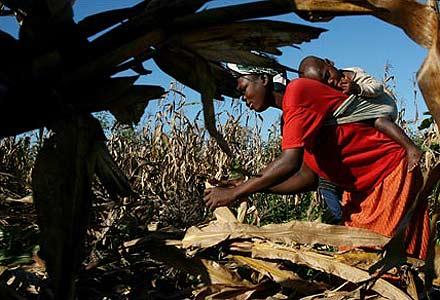 Africa, il cambiamento climatico mette a rischio sicurezza e pace