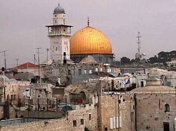 Mentre partecipa alla marcia Perugia-Assisi i soldati israeliani irrompono nella sua casa a Gerusalemme