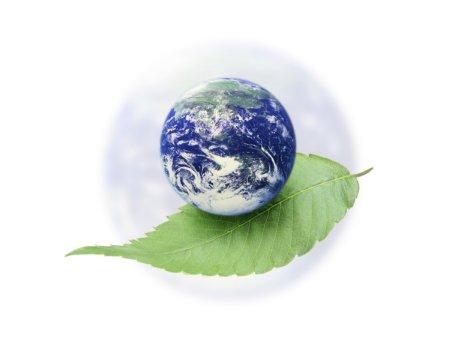 Terra futura: mostra-convegno internazionale delle buone pratiche di sostenibilità