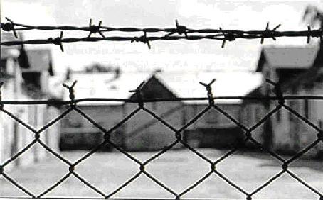 Giornata della memoria. Vecchio e nuovo antisemitismo all'ombra degli echi di guerra tra Israele e Gaza