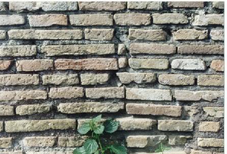 Il muro di Berlino e gli altri muri