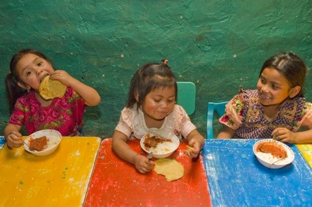 """FAO: """"I prezzi alimentari resteranno alti e volatili, a rischio la riduzione della fame nel mondo"""""""